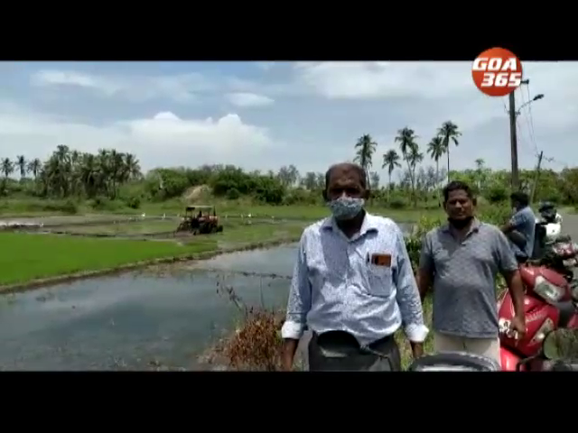 Betalbhati Farmers Says no help from Agriculture Dept.