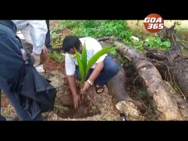 Plant trees to save our future: Vanamotsav Celebration