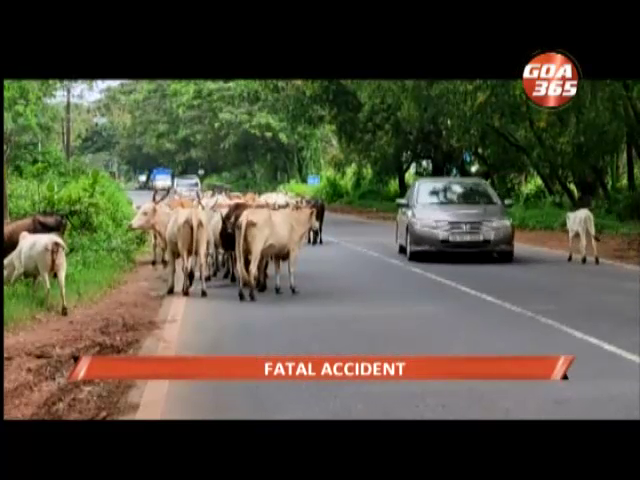 Youth looses life after his bike hit tree while avoiding roadside cattle