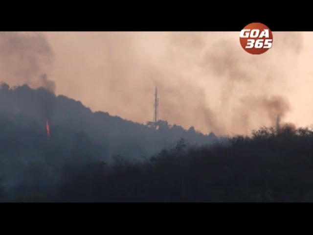 Paroda hill burnt into ashes, fire started on Mon, no attempt to control it