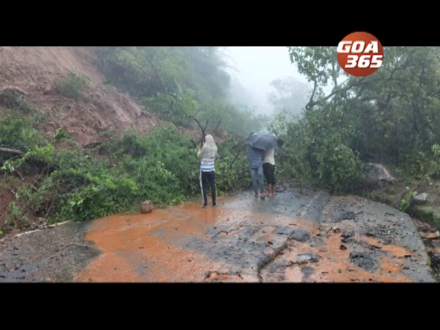 Goa receives heavy showers with some urban areas getting waterlogged