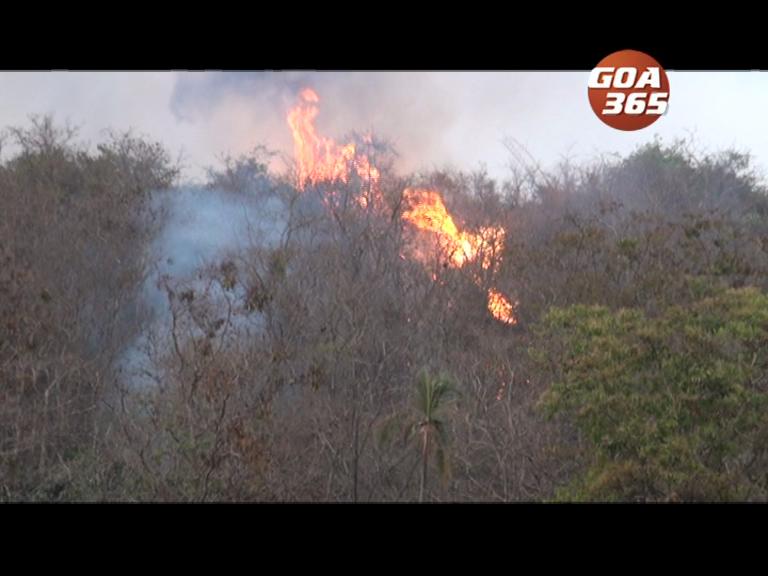 4th Paroda hillock on fire, Clefacio suspects politics behind it