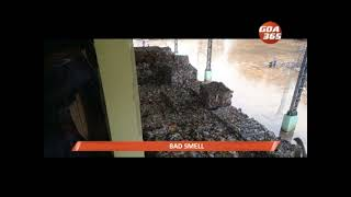Bad smell from paper mill upsets neighbours