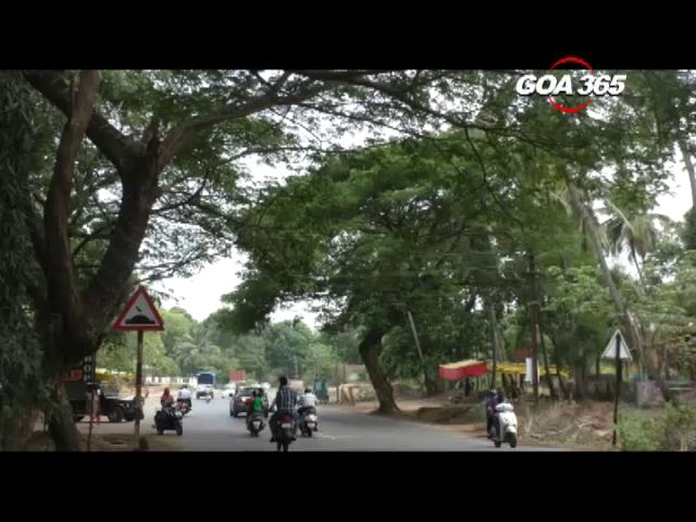 Navelim locals complain over dept failure to cut branches