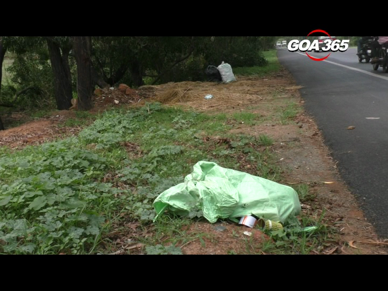 Garbage, stray dogs lead to accident at Dramapur