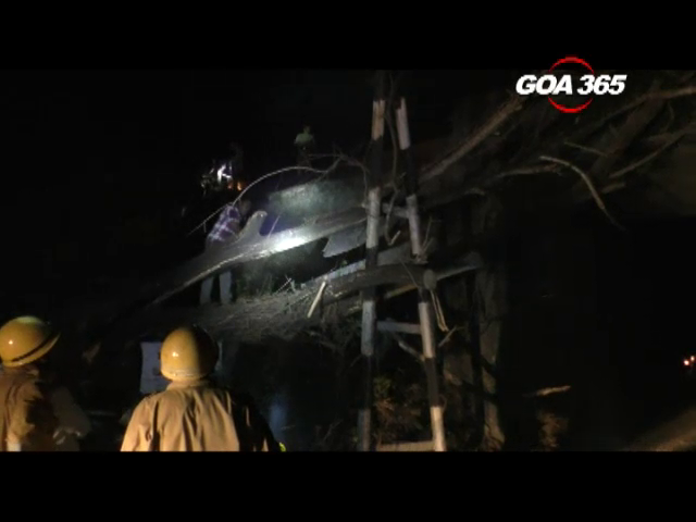 Balli Train accident: Falling Tree takes one life
