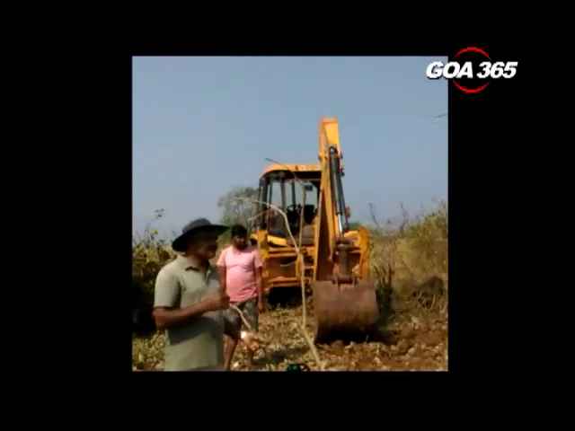Forest Department dismisses appeal against Cutting of trees at Mopa