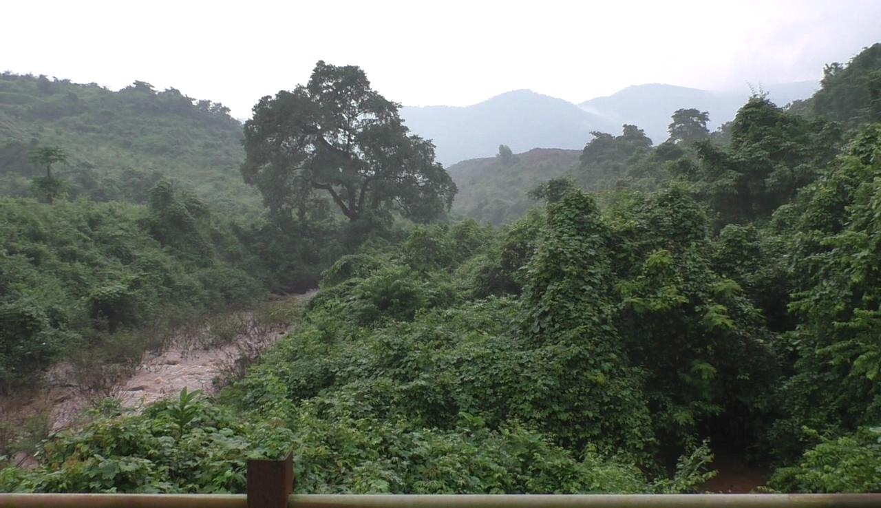 Green Goans irked over Mah Govt allocating funds for Virdi dam