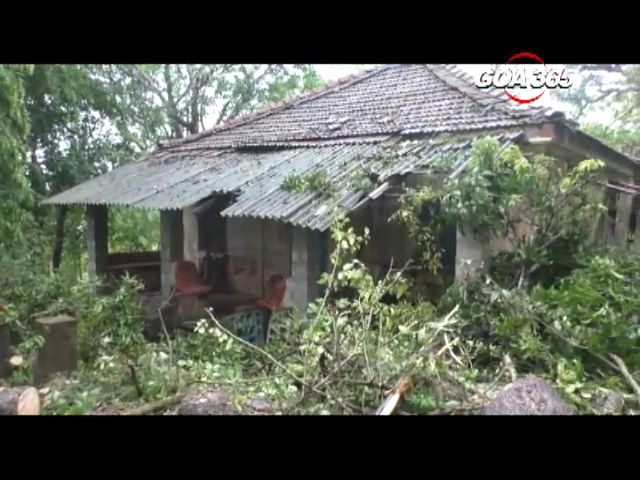 Huge tree falls on a house in Aldona