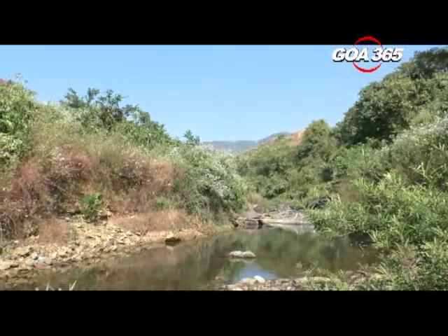 Impact of Maharashtra's Virdi dam on Goa. Watch this ground report