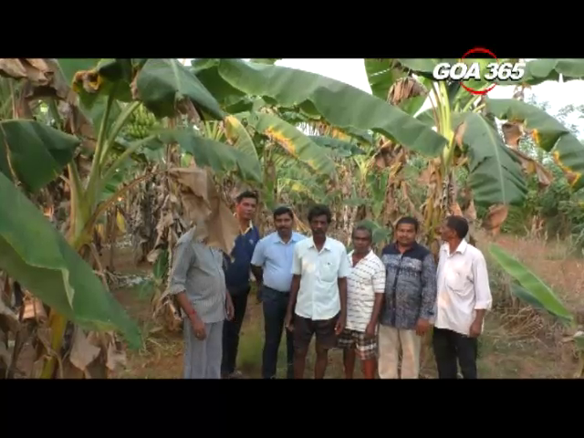 Sal farmers threaten stir over water supply