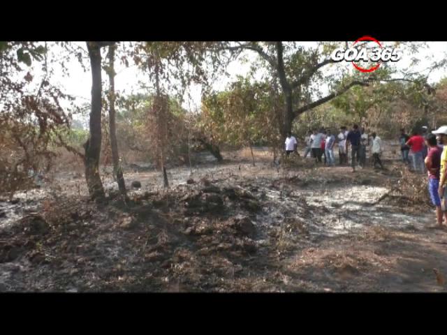Shiv Sena leader held for Kuynamoll murder
