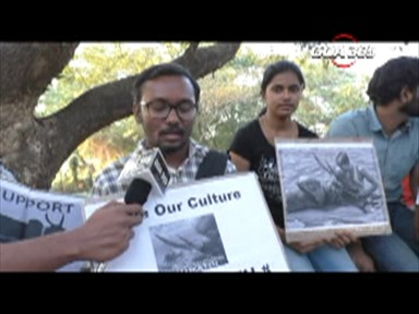 The 'Tamil' Jallikattu agitation reaches Goa